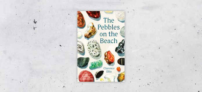The Pebbles on the Beach by Clarence Ellis