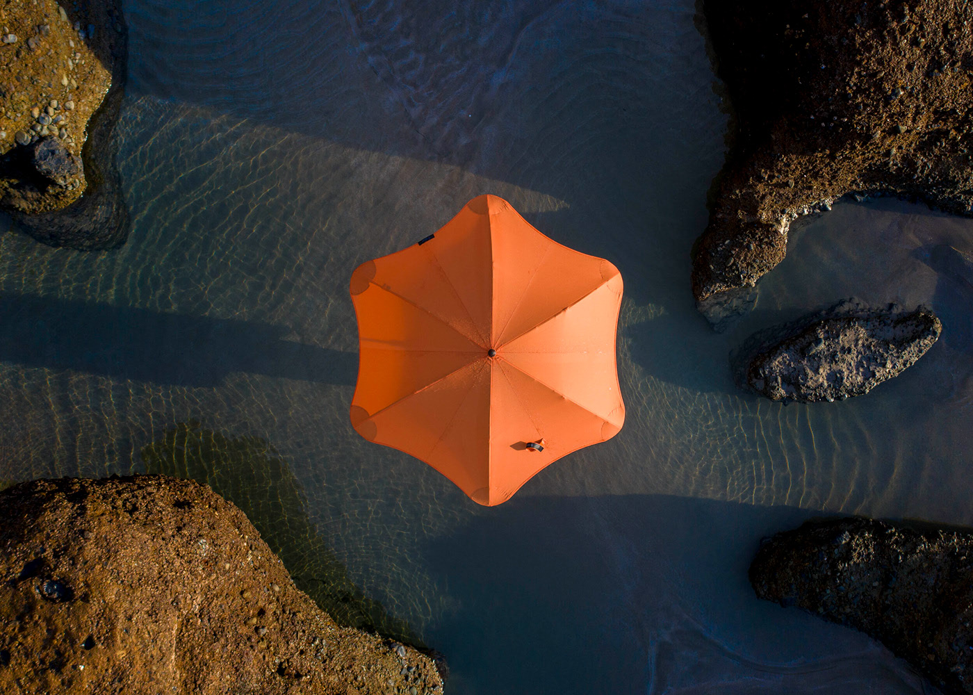Blunt Umbrellas by Petra Leary