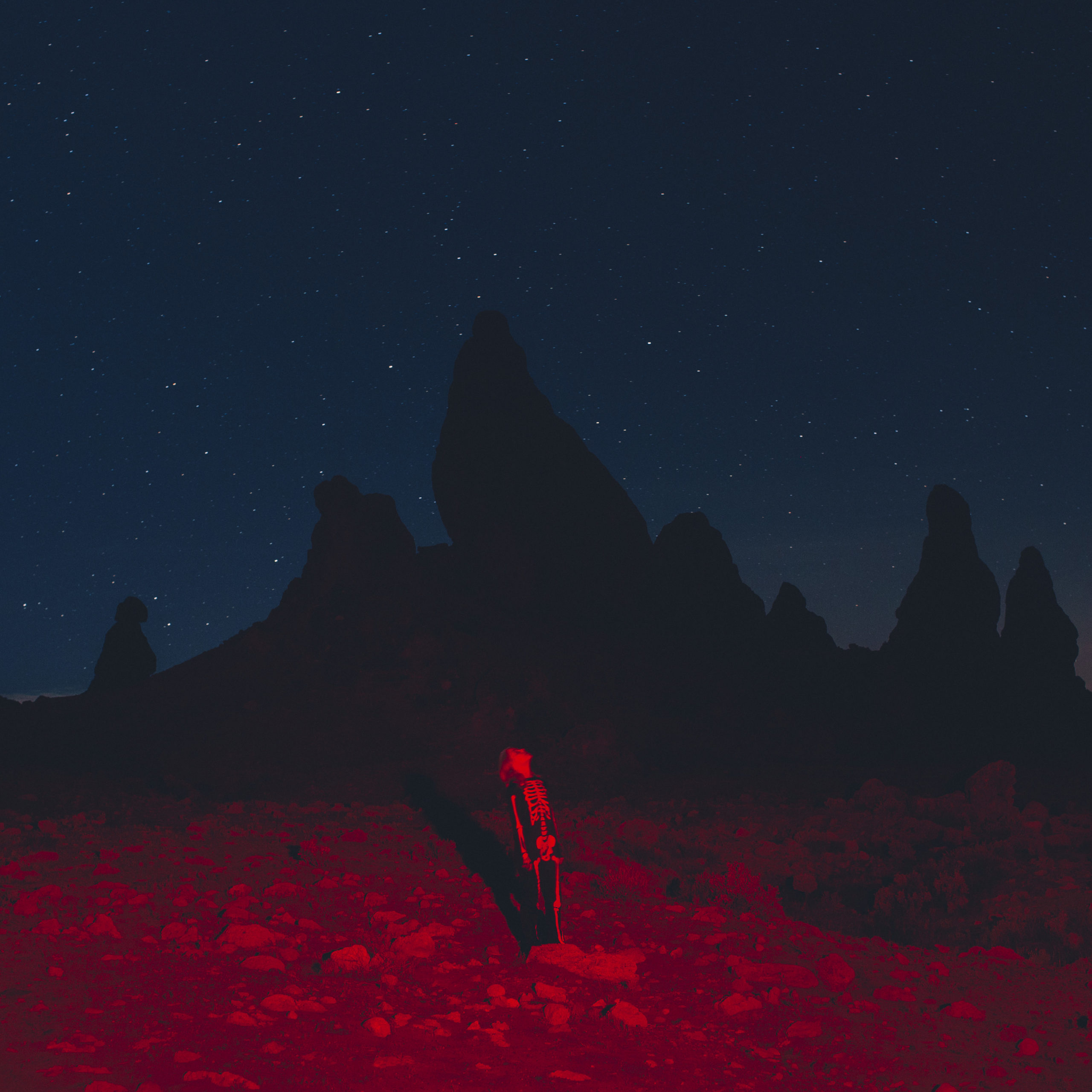 Image result for punisher album cover